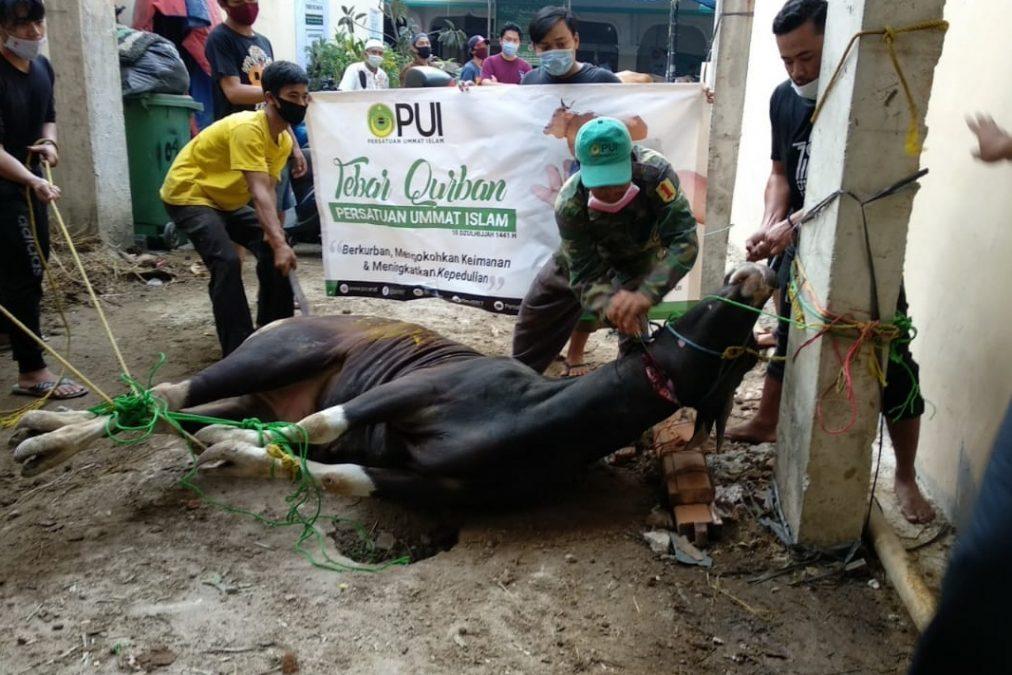 Photo of Aher : Qurban Ditengah Pandemi Memiliki Nilai Tambah