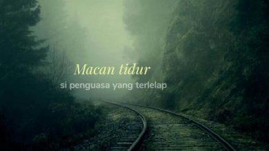 Photo of Untuk Sahabat…